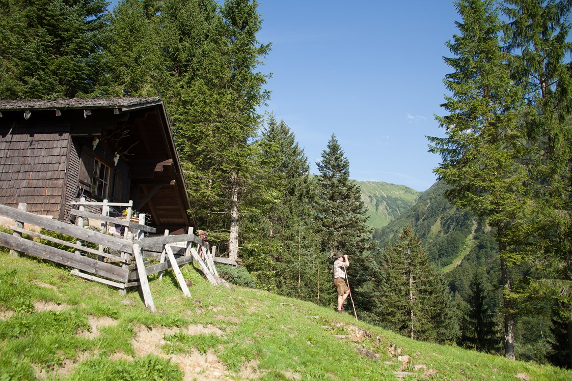 Mountainbikehotel: Wildbeobachtung - Alpen Hotel Post
